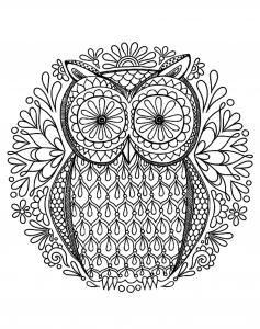 Image de hiboux à télécharger et colorier