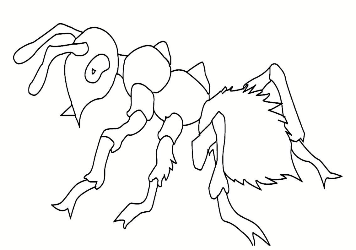 Insectes Fourmi 5 Coloriage Dinsectes Fourmis Araignées