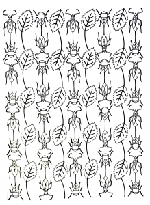 coloriage-scarabees-et-feuilles free to print