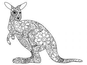 Kangourou fleuri