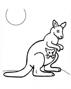 Dessin de kangourou gratuit à télécharger et colorier