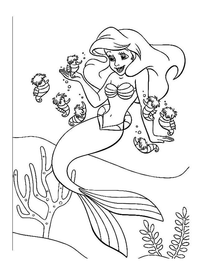Ariel Petite Sirene Disney 7 Coloriage La Petite Sirène
