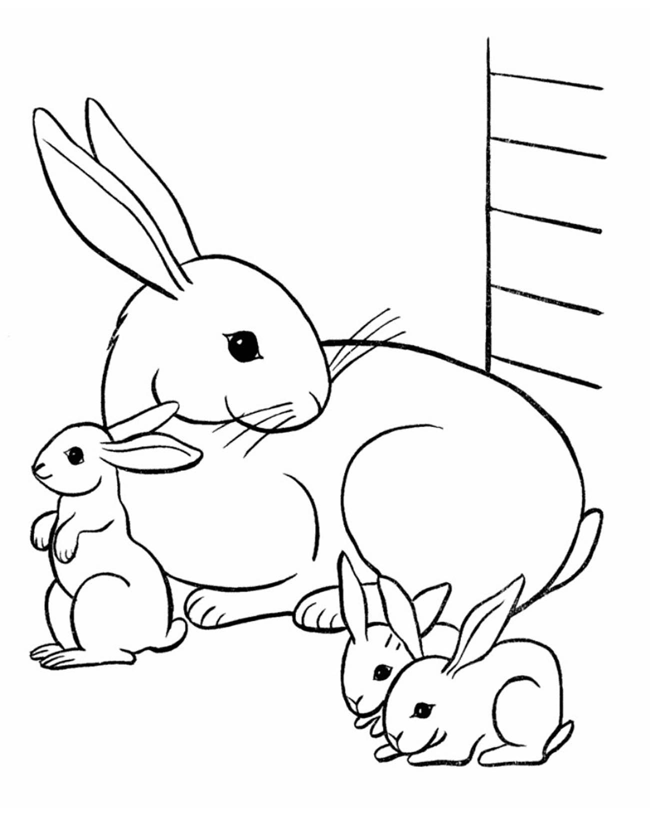 Une adorable famille de lapin dans leur clapet.