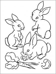 Coloriage de lapin à imprimer pour enfants
