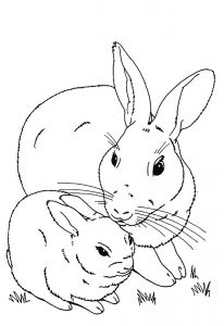 Coloriage de lapin pour enfants