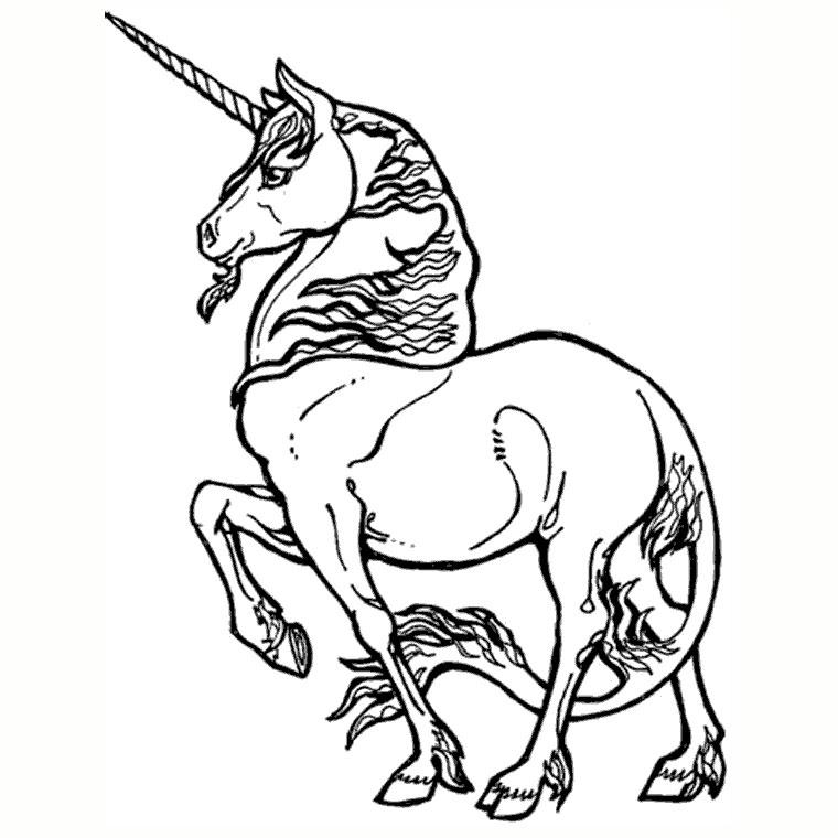Magnifique licorne à colorier : gratuit !A partir de la galerie : Licornes