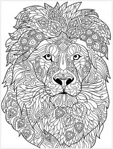 Tête de lion avec motifs complexes à colorier
