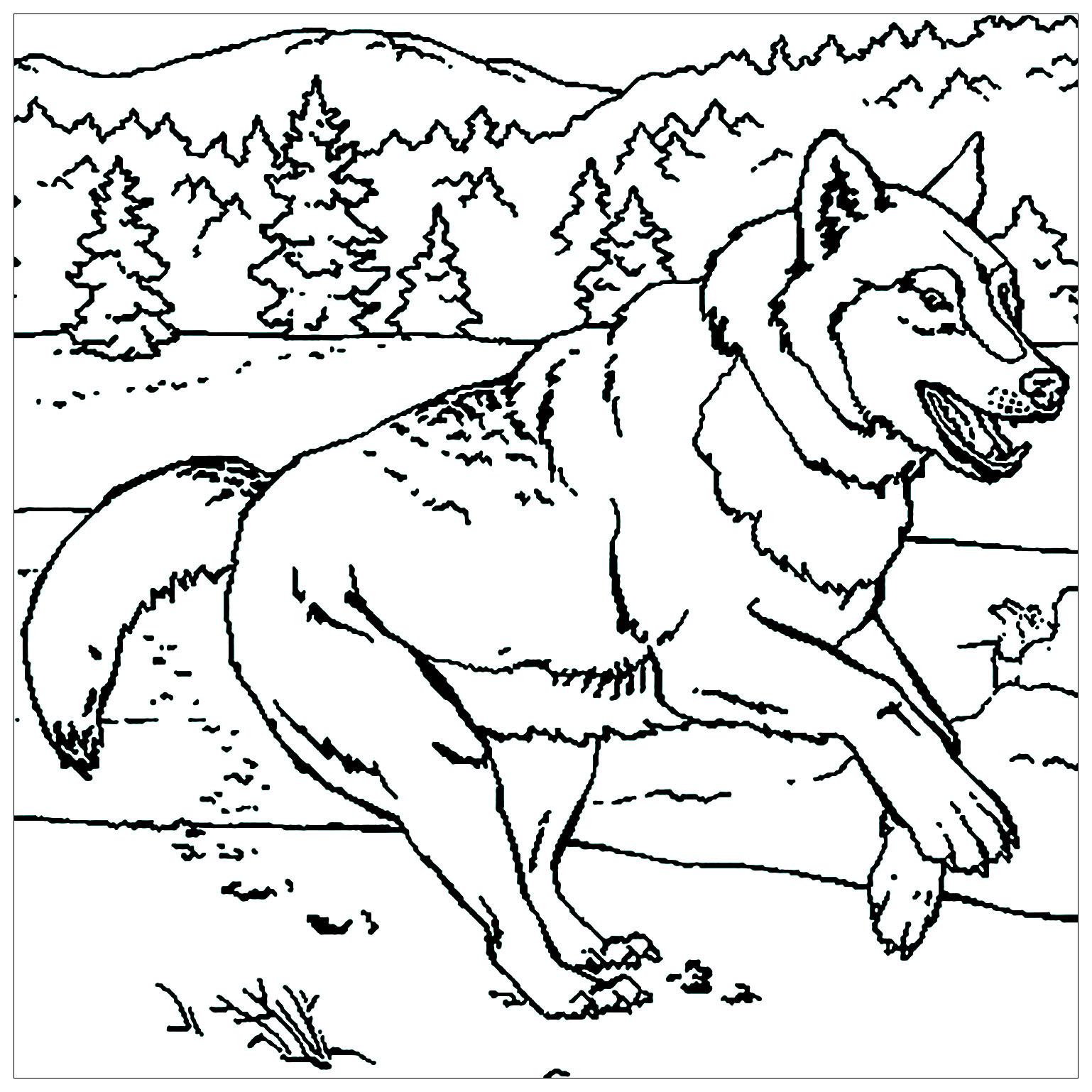 Coloriage d'un loup en pleine course dans la nature