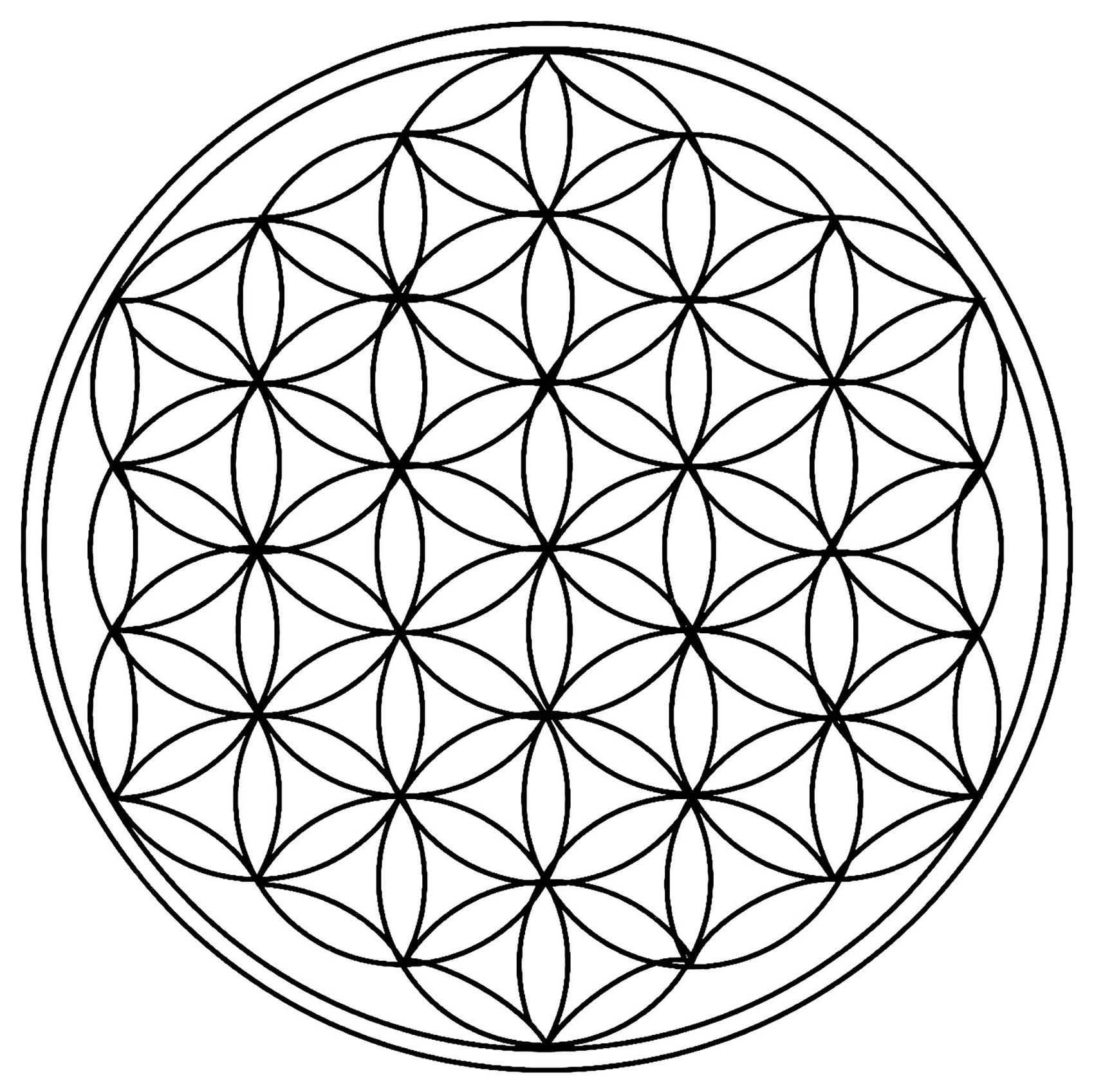 Regardez bien, ce mandala n'est fait que de cercles !