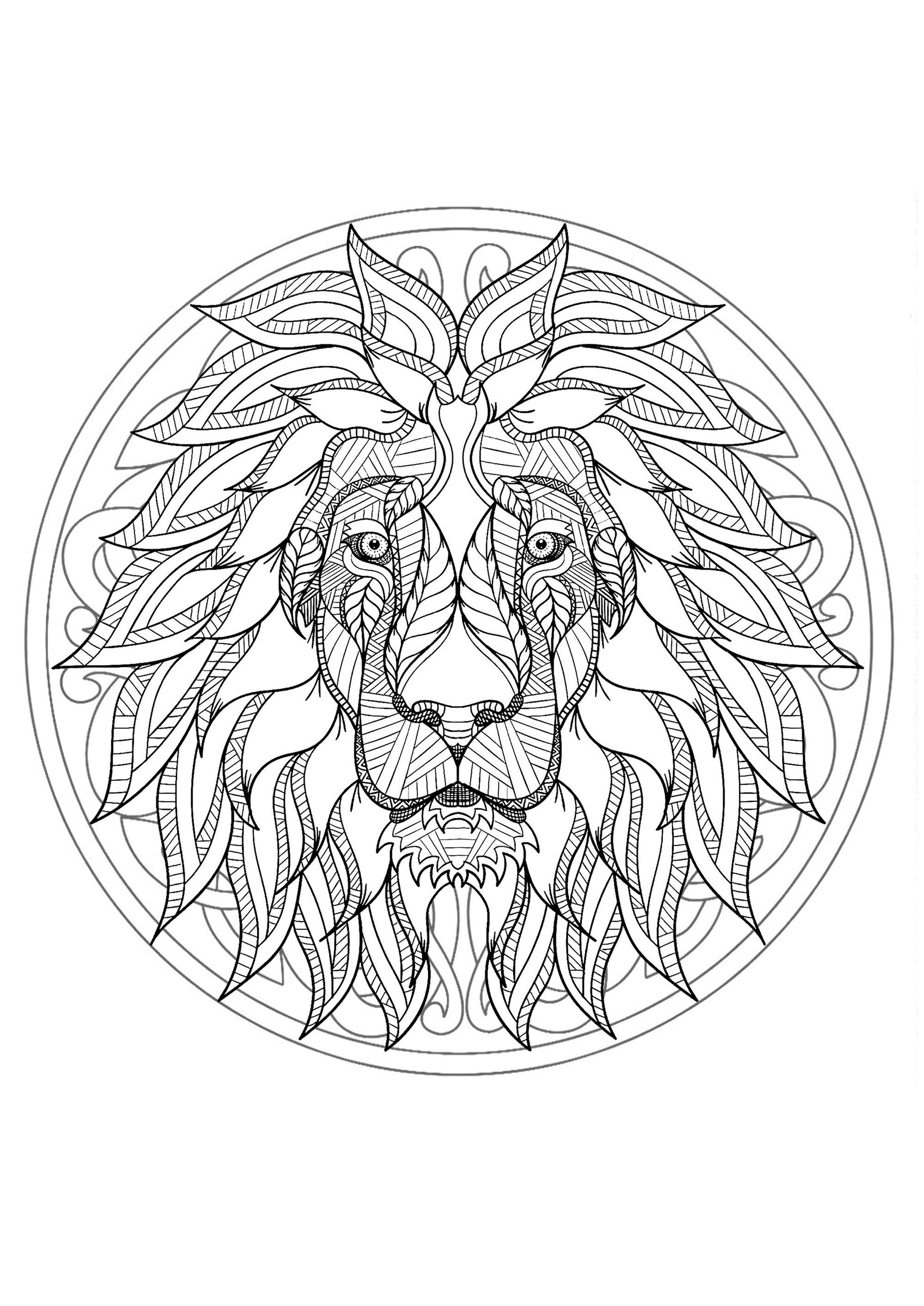 Inside The Earth Coloring Pages