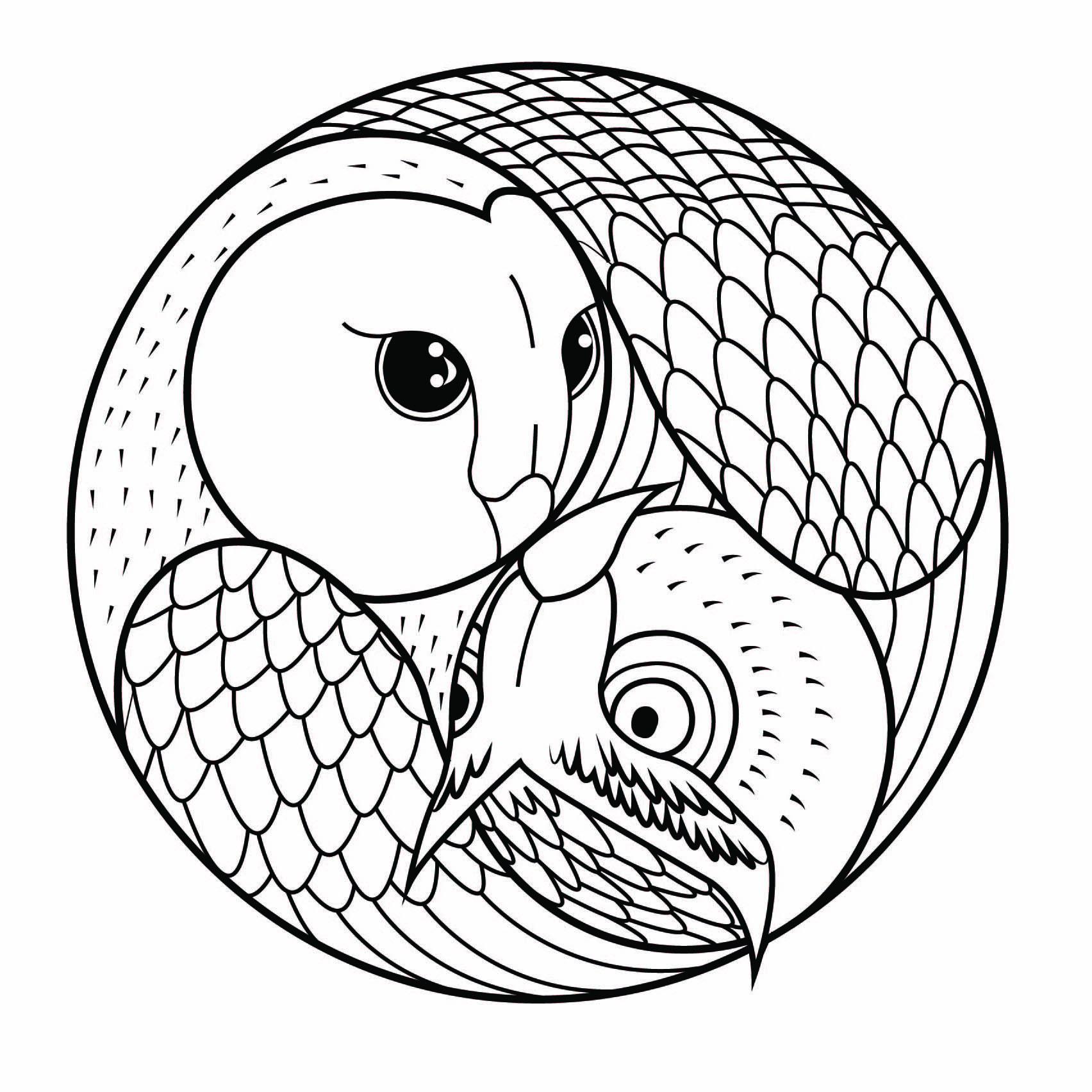 Un hibou et une chouette dans un joli Mandala