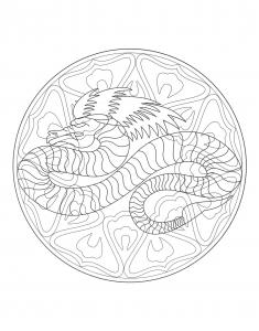 Coloriage a imprimer mandala dragon 4