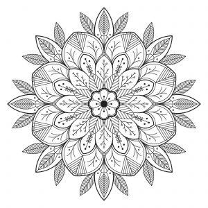 Mandala avec feuilles et fleurs
