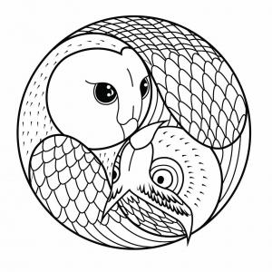 Mandala hibou et chouette