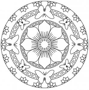 Mandala papillons et fleurs