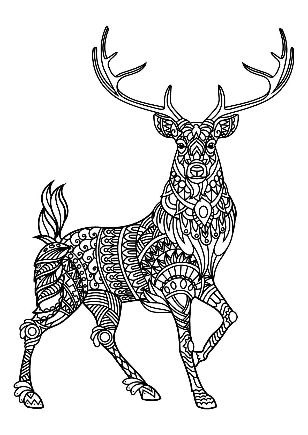 Cerf, avec motifs harmonieux et complexes