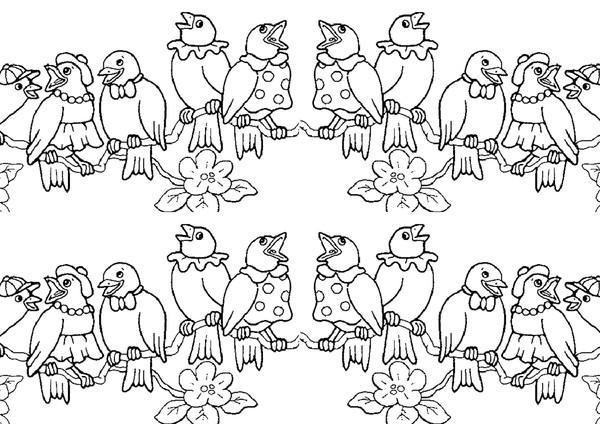 Oiseaux 1A partir de la galerie : Oiseaux