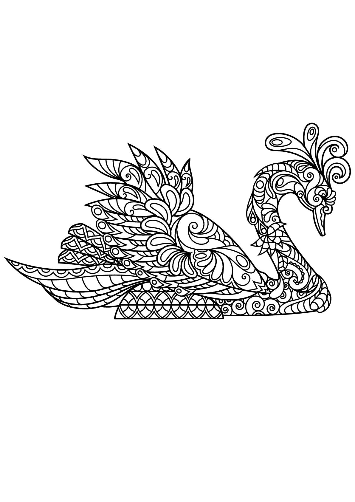Cygne - Coloriage d'Oiseaux - Coloriages pour enfants