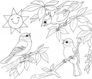 Coloriage oiseaux 5