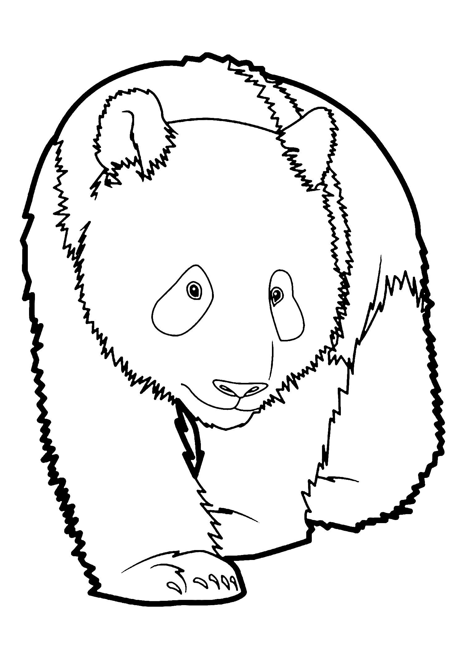 Incroyable Coloriage de panda, simple, pour enfants