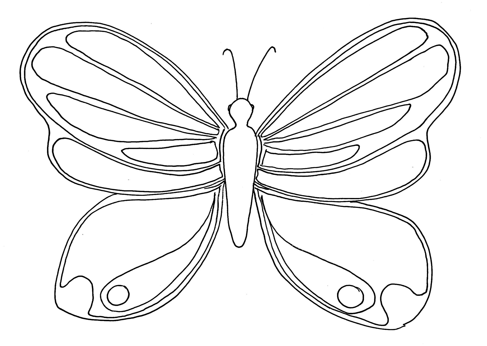 Simple Coloriage De Papillon Coloriage De Papillons Coloriages