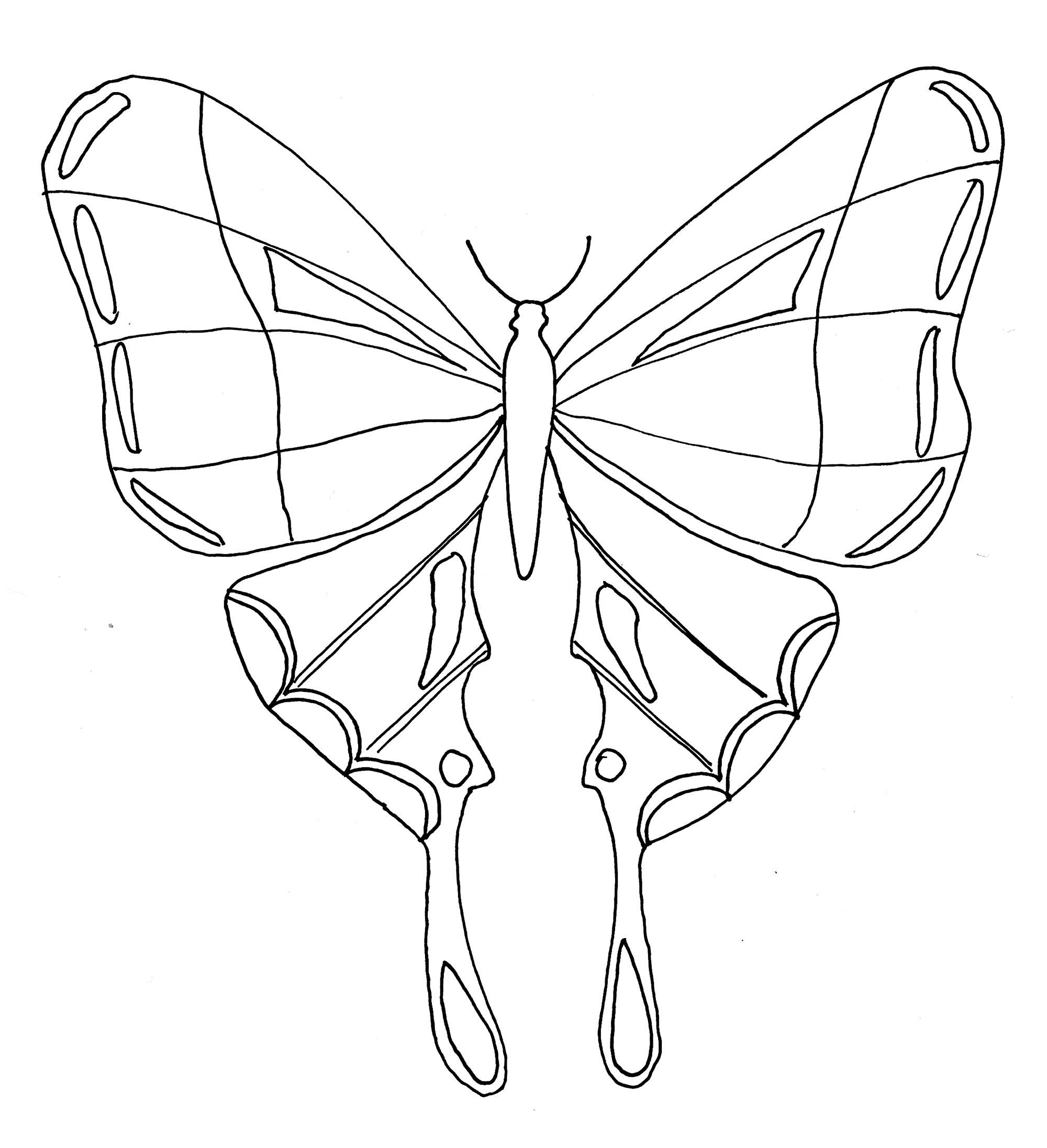 Coloriage De Papillon Coloriage De Papillons Coloriages Pour