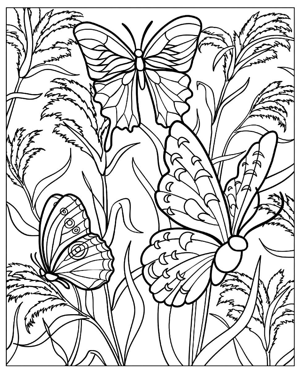 Dessin de Papillons à télécharger et imprimer pour enfants