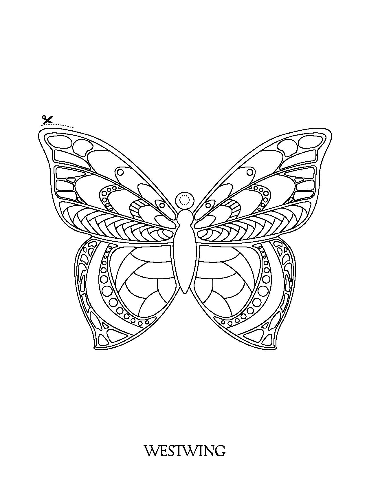 Un beau coloriage de papillon et découper. Des motifs complexes et élégants à colorier