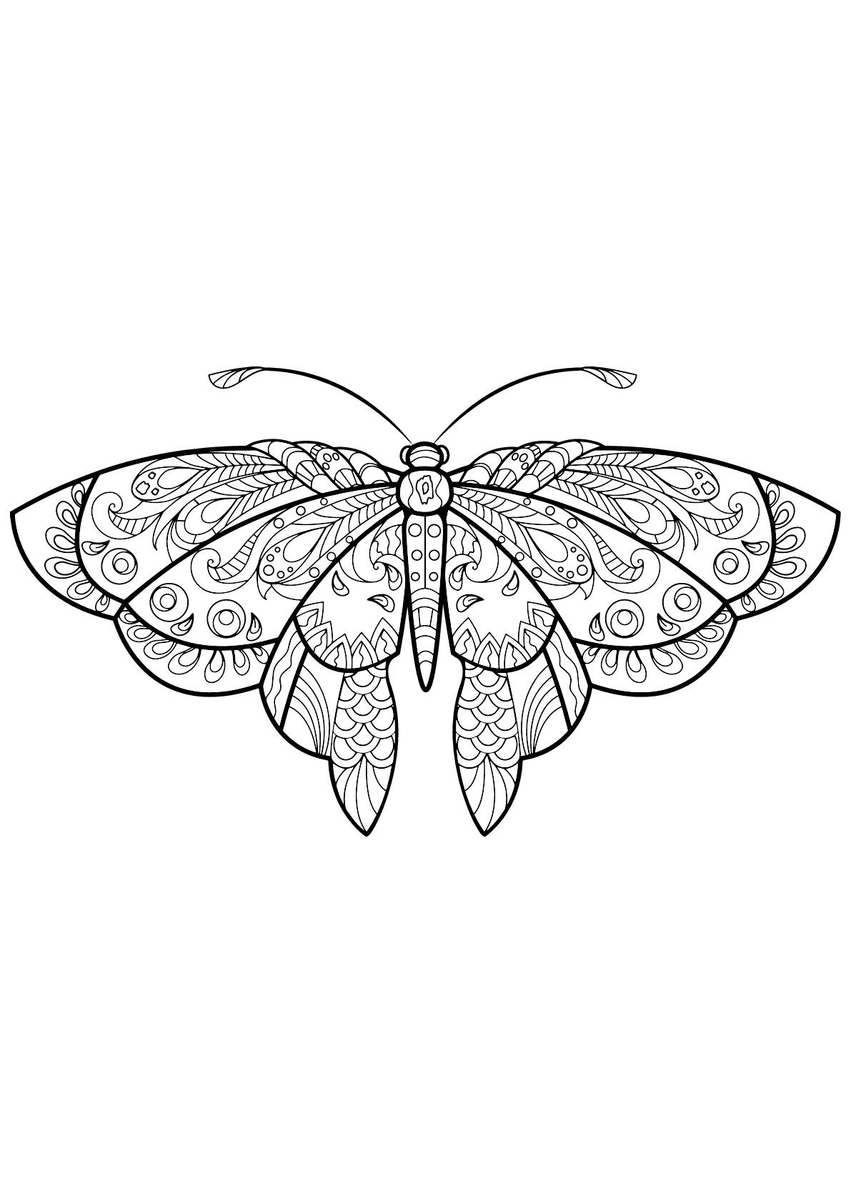 Coloriage de Papillons à colorier pour enfants