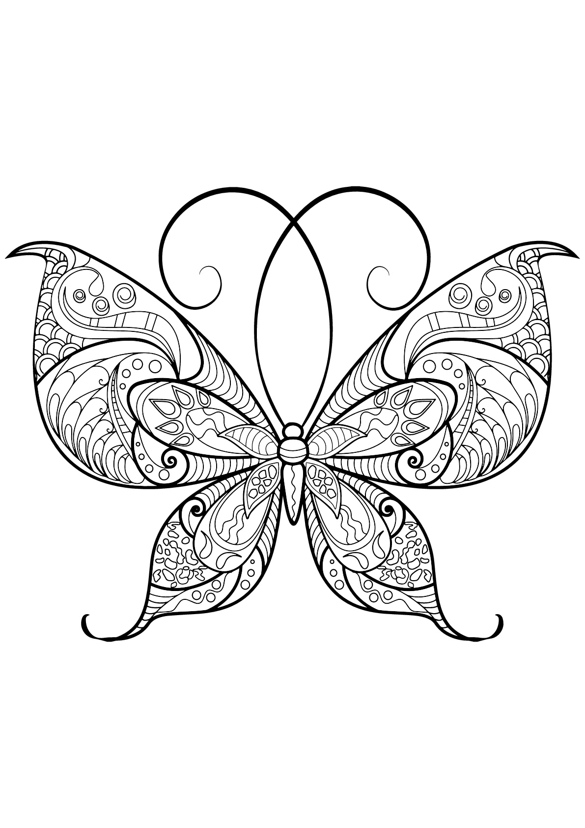 Papillon motifs 13 coloriage de papillons coloriages - Papillon coloriage ...