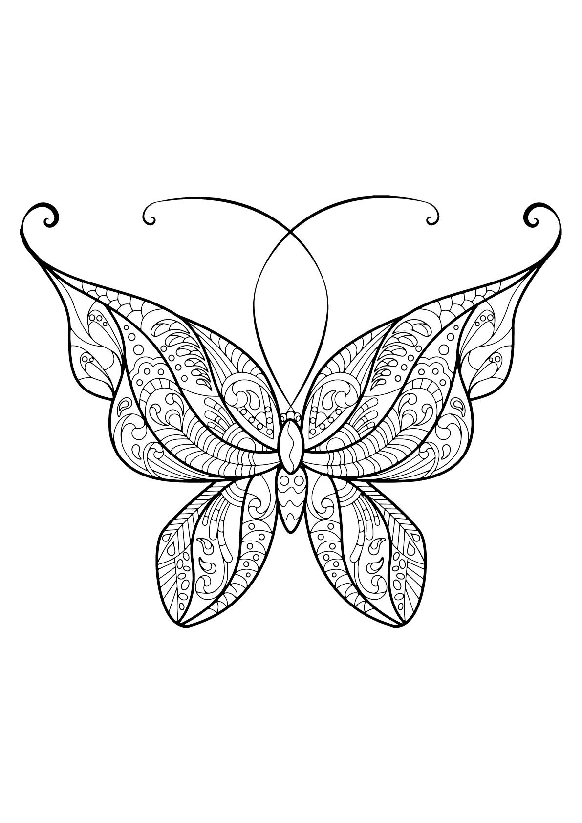 Papillon coloriages pour enfants - Papillon coloriage ...