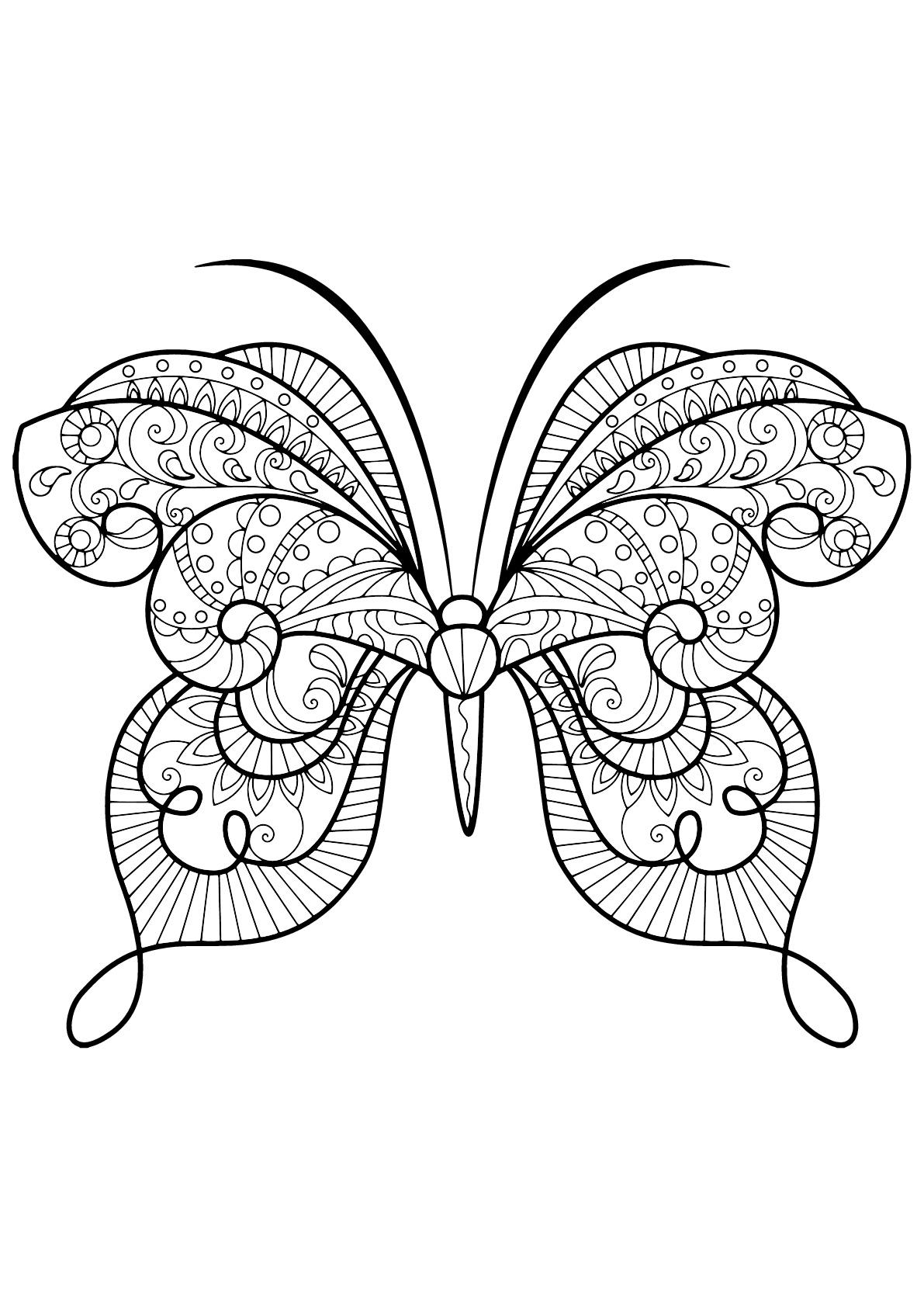 Coloriage De Papillons A Imprimer Coloriage De Papillons