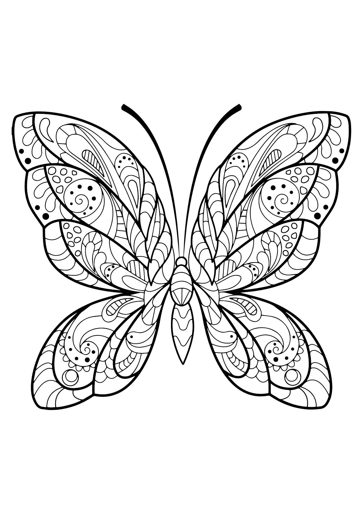 Image de Papillons à imprimer et colorier - Coloriage de ...