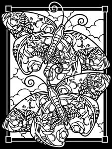 Coloriage deux papillons sur fond noir