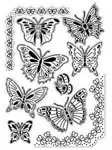 Coloriage difficile papillons vintage