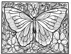 coloriage grand papillon