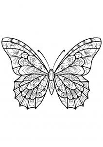 Dessin de Papillons gratuit à télécharger et colorier