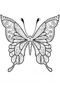 Coloriage de Papillons à télécharger
