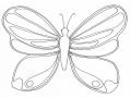 Coloriage de Papillons gratuit à colorier