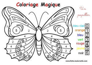 Coloriage papillons 6