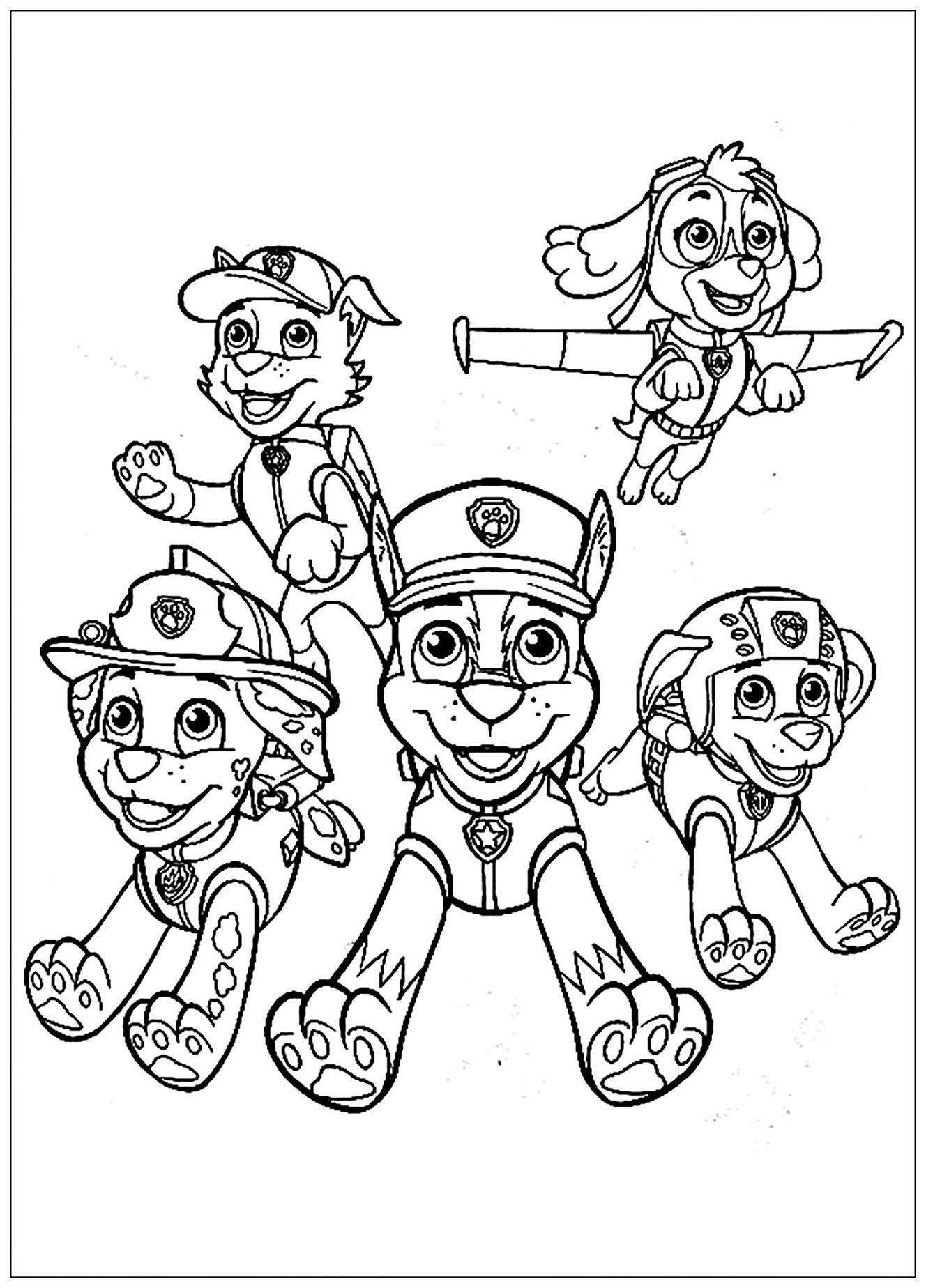 image=pat patrouille coloriage pat patrouille equipe 1