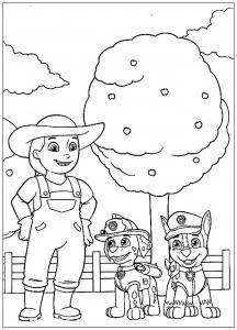 Pat Patrouille : avec la fermière