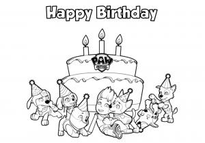 Pat Patrouille : Happy Birthday