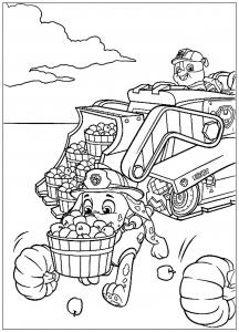 Coloriage Pat Patrouille Coloriages Pour Enfants Page 3