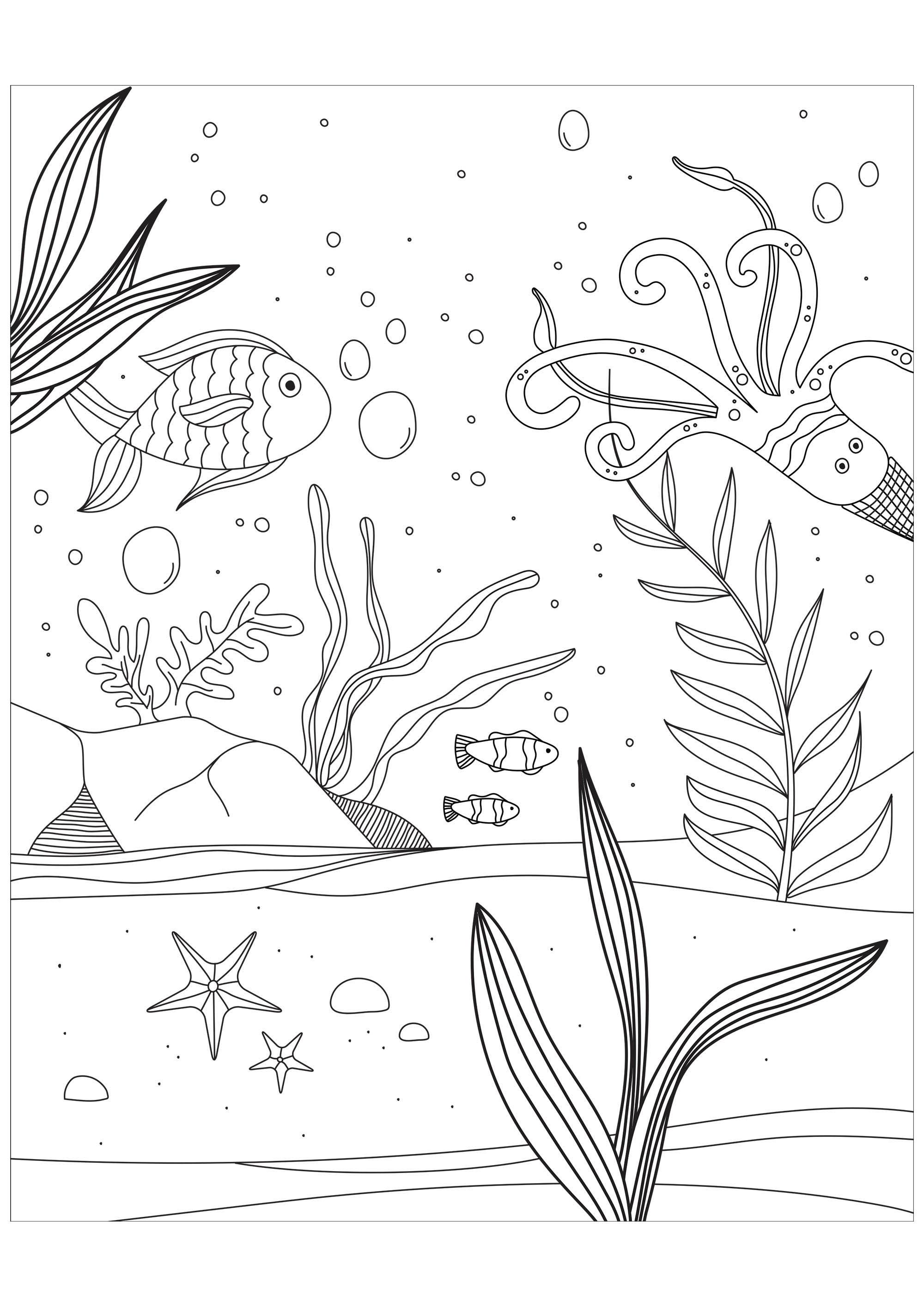 Poissons Pieuvre Et Etoile De Mer Coloriage De Poissons