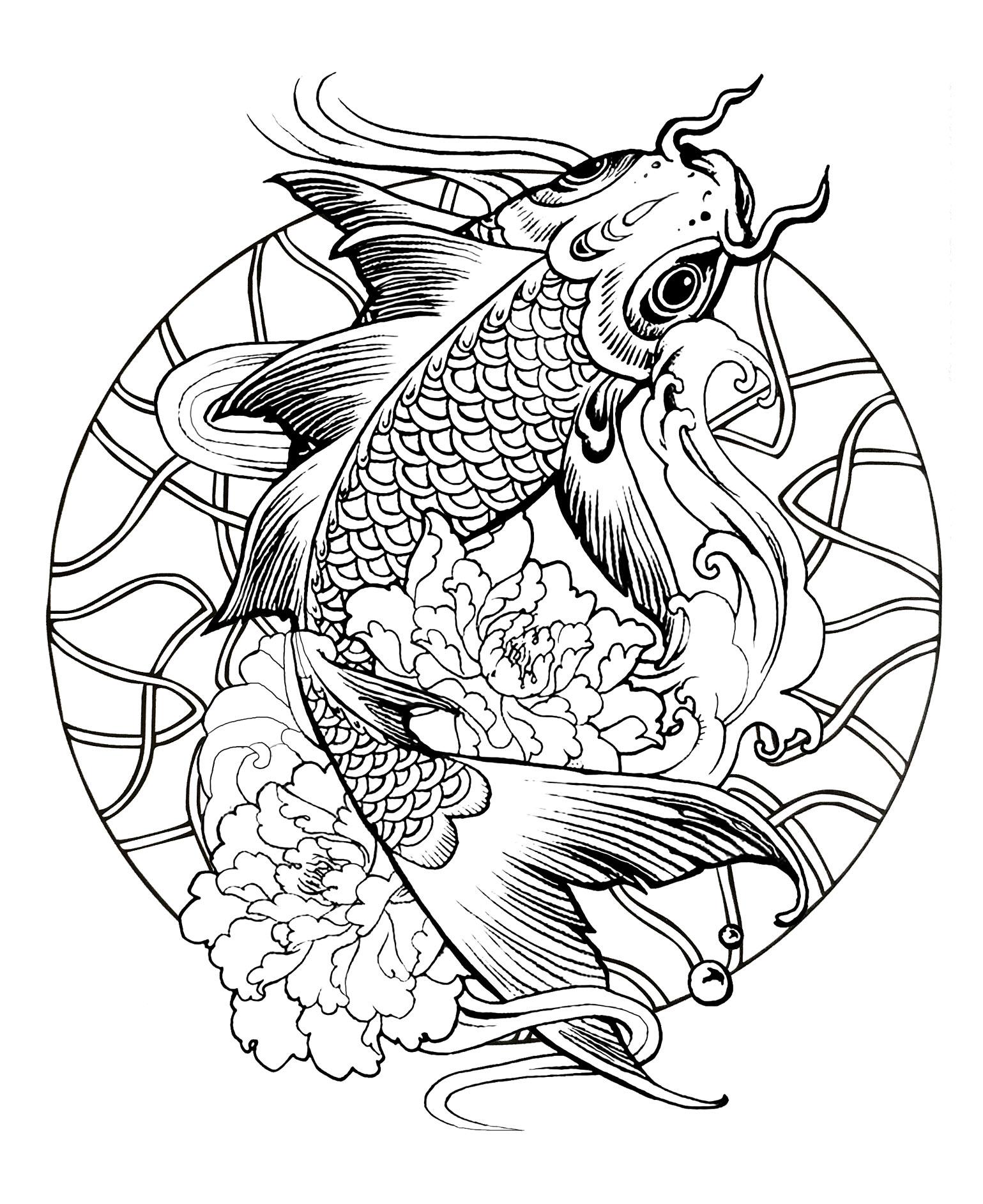 Dessin de carpe a imprimer jz72 jornalagora - Coloriage de poisson ...