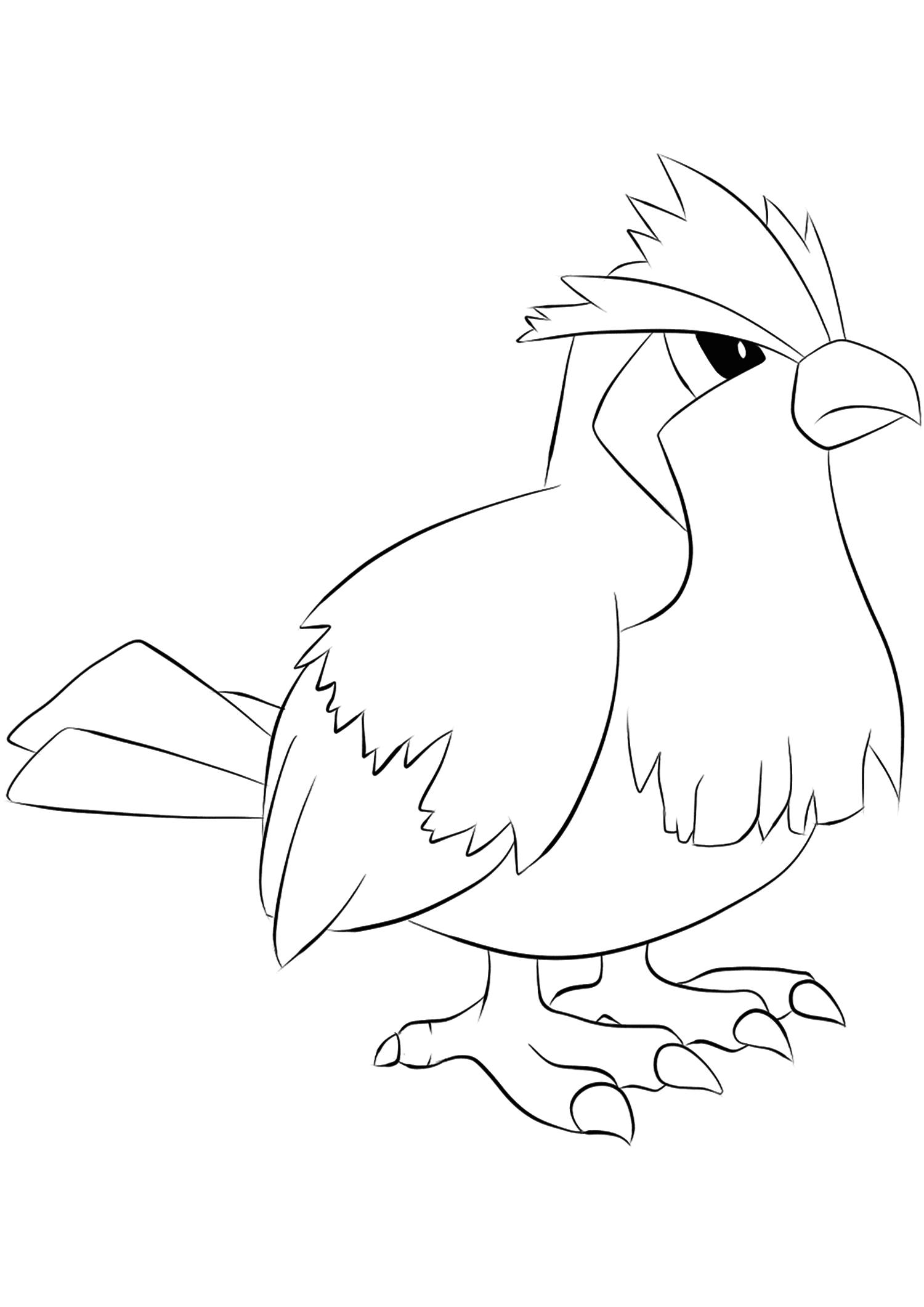 <b>Roucool</b> (No.16) : Pokémon de génération I