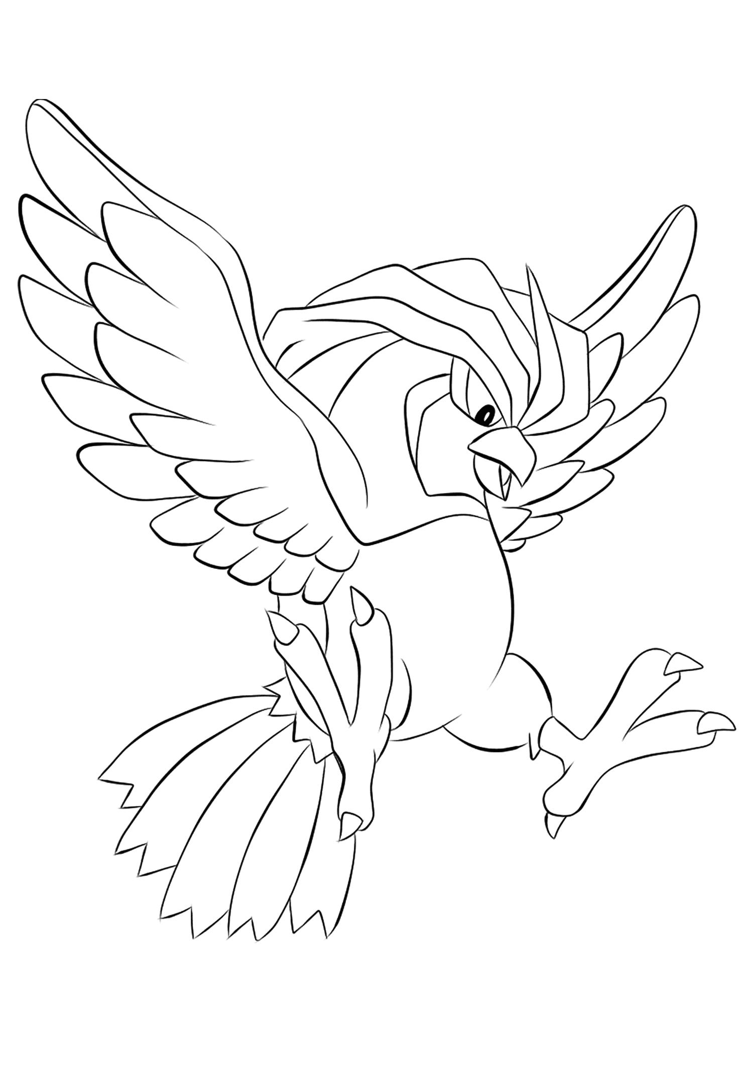 <b>Roucoups</b> (No.17) : Pokémon de génération I