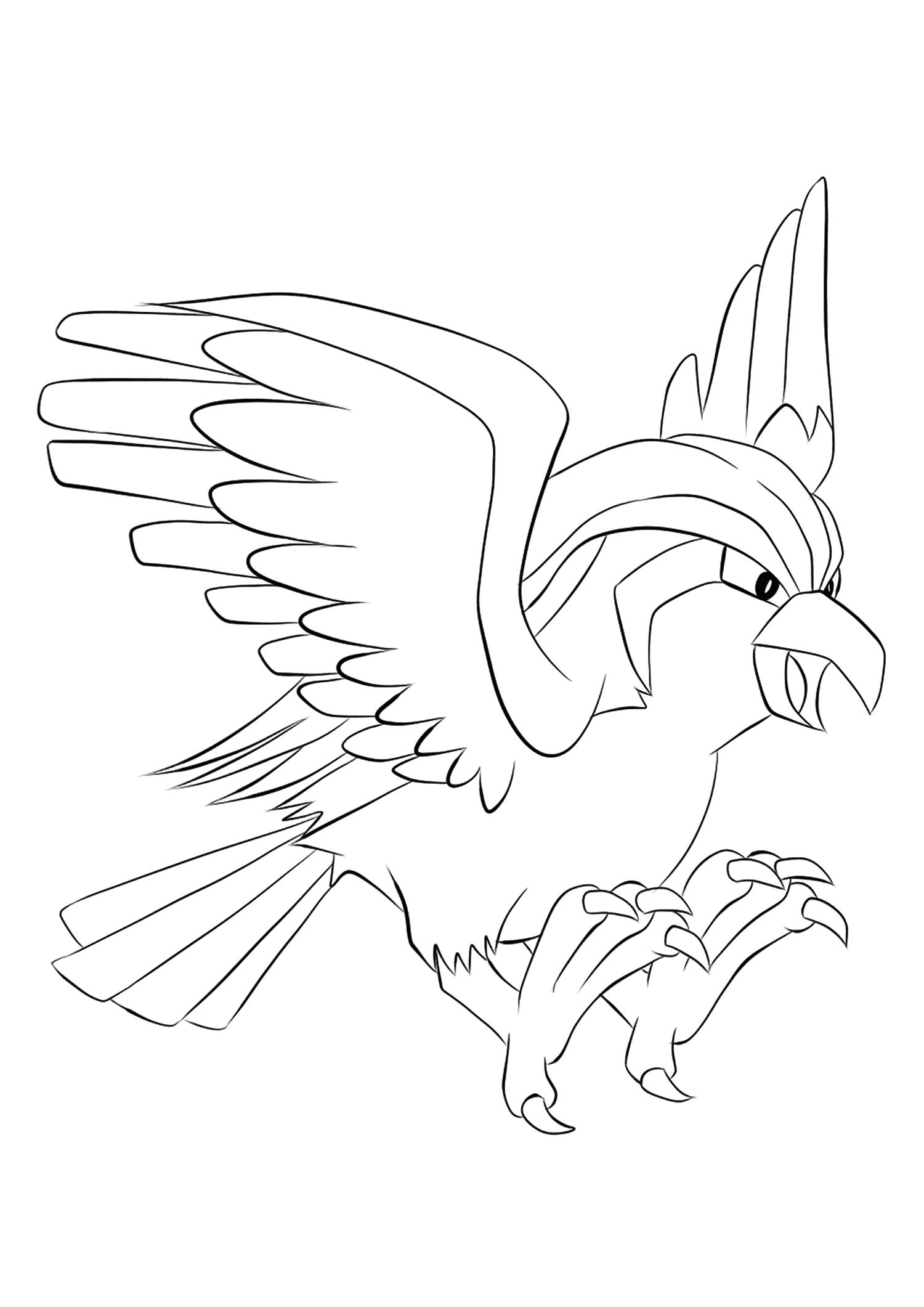 <b>Roucarnage</b> (No.18) : Pokémon de génération I
