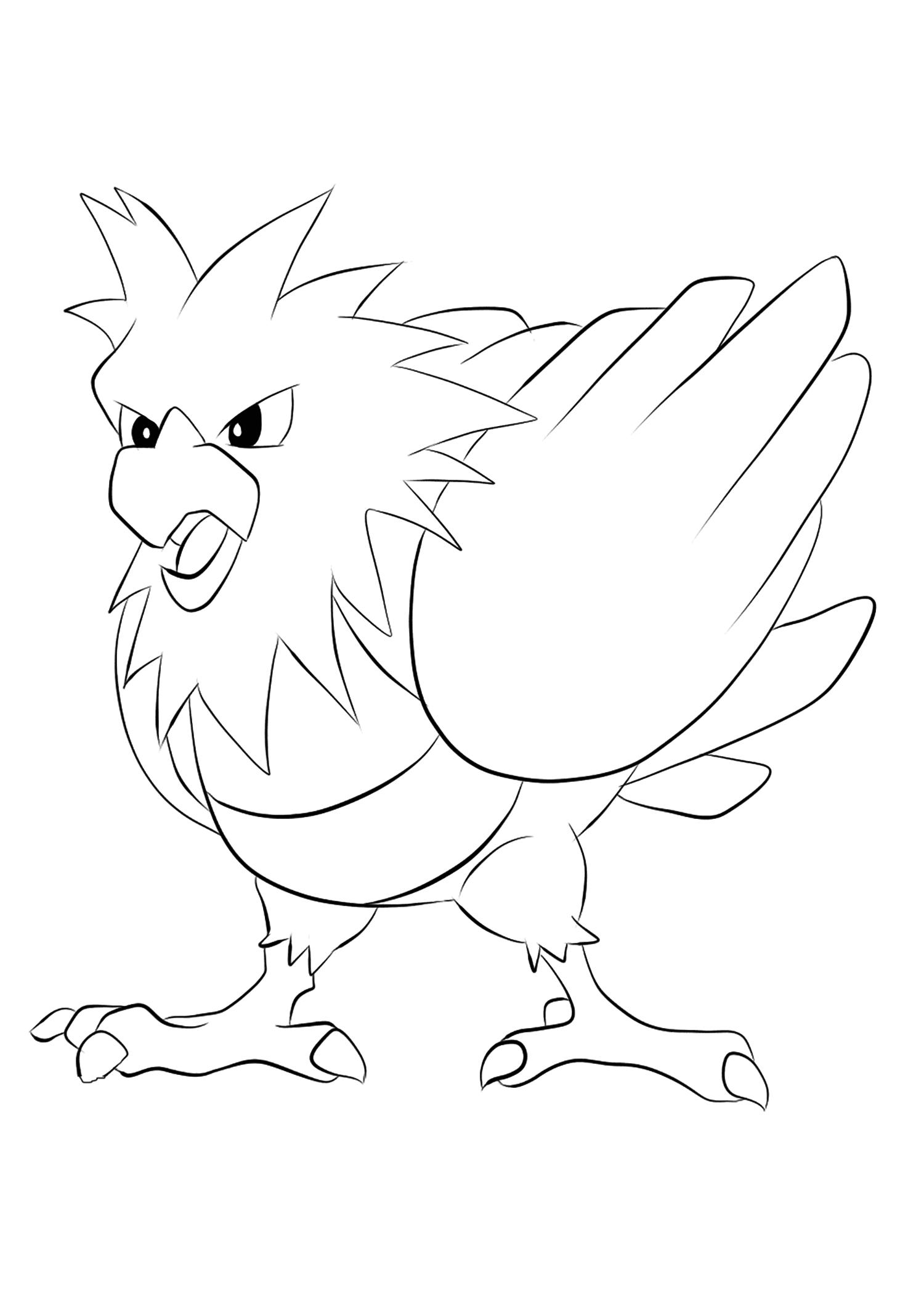 <b>Piafabec</b> (No.21) : Pokémon de génération I